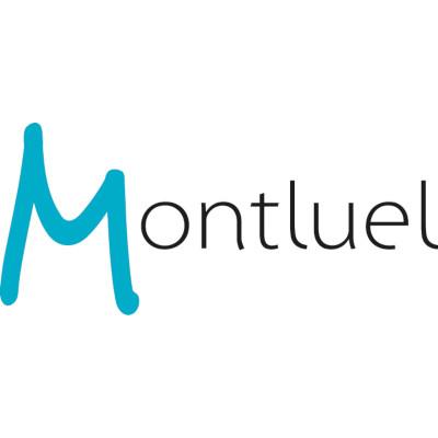 Commune de Montluel